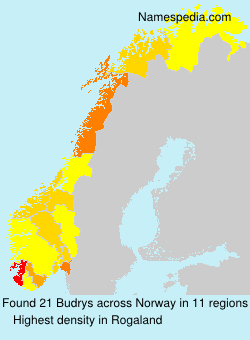 Surname Budrys in Norway