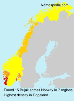 Surname Bujak in Norway