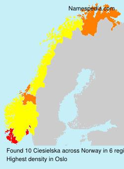 Familiennamen Ciesielska - Norway
