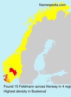 Surname Feldmann in Norway