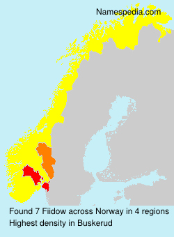 Surname Fiidow in Norway