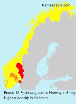 Surname Fjeldhaug in Norway