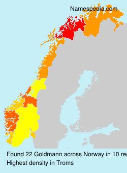 Familiennamen Goldmann - Norway