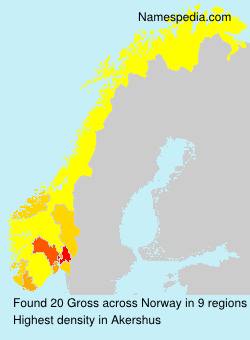 Surname Gross in Norway