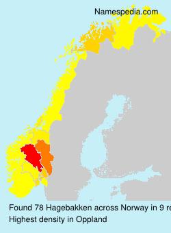 Surname Hagebakken in Norway