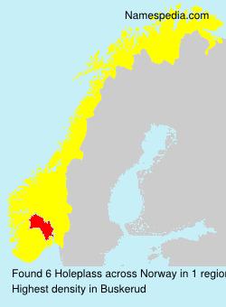 Surname Holeplass in Norway