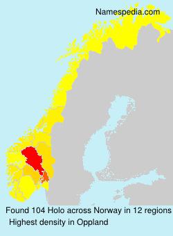 Familiennamen Holo - Norway