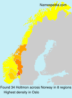 Surname Holtmon in Norway