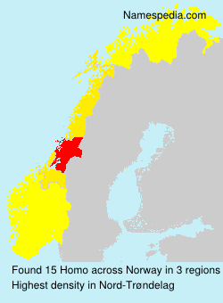 Surname Homo in Norway
