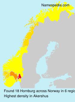Surname Hornburg in Norway