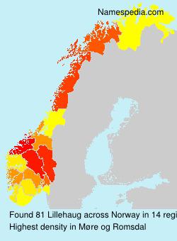 Surname Lillehaug in Norway