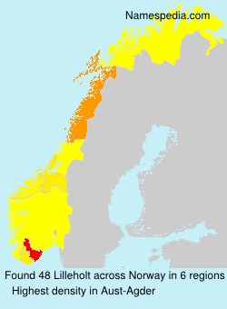 Surname Lilleholt in Norway