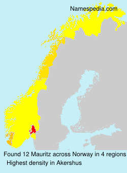 Surname Mauritz in Norway