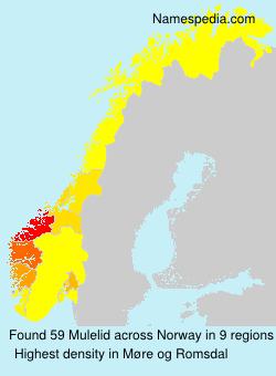 Surname Mulelid in Norway