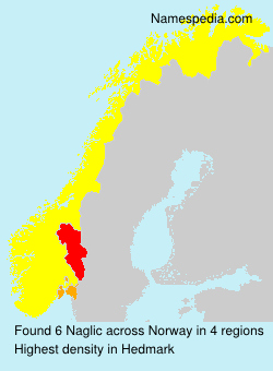 Surname Naglic in Norway