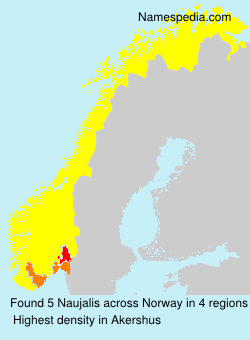 Surname Naujalis in Norway