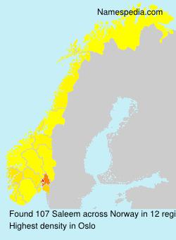 Surname Saleem in Norway