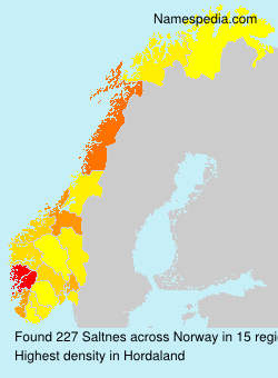 Surname Saltnes in Norway