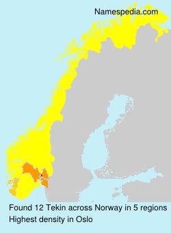 Familiennamen Tekin - Norway