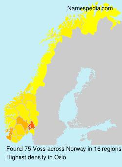 Familiennamen Voss - Norway