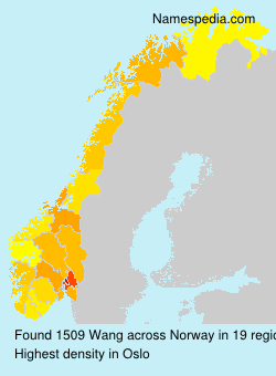 Surname Wang in Norway