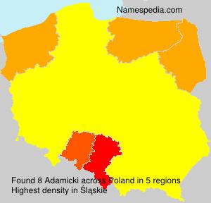 Surname Adamicki in Poland