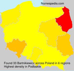 Bartnikiewicz