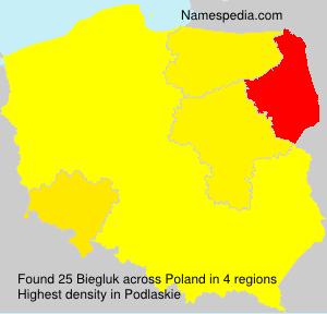 Familiennamen Biegluk - Poland
