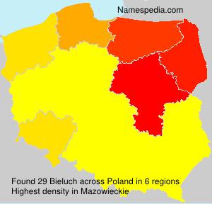 Familiennamen Bieluch - Poland