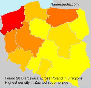 Biercewicz