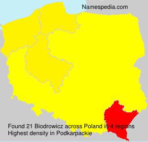 Surname Biodrowicz in Poland