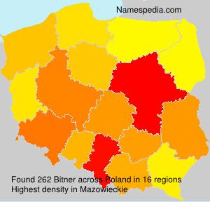 Bitner - Poland
