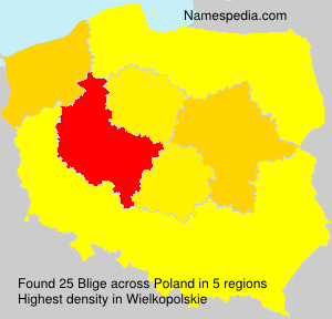 Surname Blige in Poland