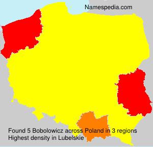 Familiennamen Bobolowicz - Poland