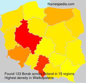 Familiennamen Borak - Poland