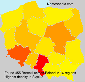 Surname Borecki in Poland