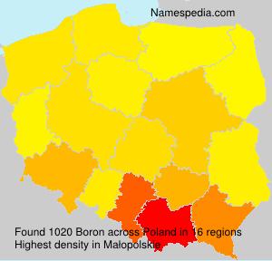 Familiennamen Boron - Poland