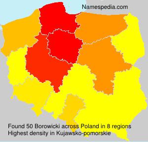 Surname Borowicki in Poland