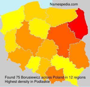 Borusiewicz