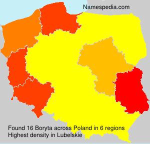 Surname Boryta in Poland