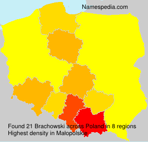 Surname Brachowski in Poland