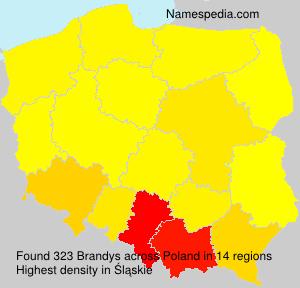 Familiennamen Brandys - Poland