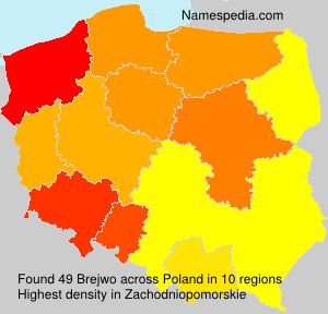 Surname Brejwo in Poland