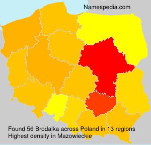 Surname Brodalka in Poland