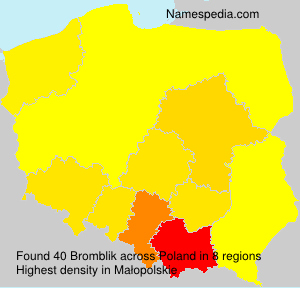 Familiennamen Bromblik - Poland