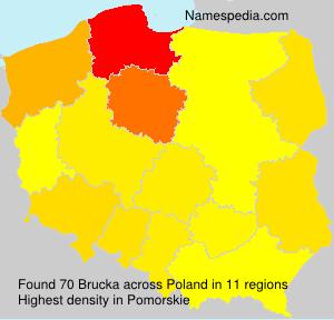 Surname Brucka in Poland
