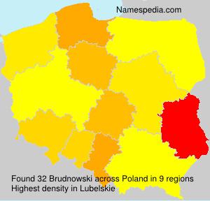 Brudnowski