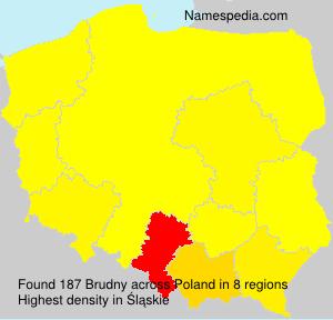 Surname Brudny in Poland