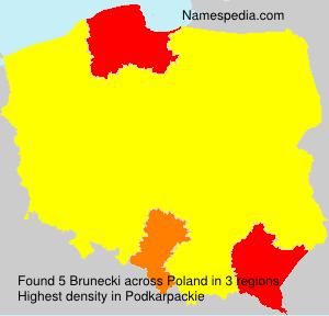 Surname Brunecki in Poland