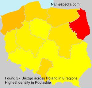 Surname Bruzgo in Poland